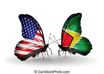 usa, symbole, deux, relations, papillons, drapeaux, guyane, ailes
