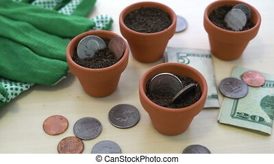 USD Growing Money in Pots Concept - Close up shot of USA...