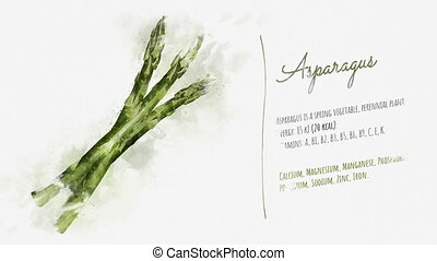 Useful properties of Asparagus - An animated pattern of...