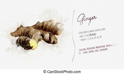 Useful properties of Ginger - A finished video about the...