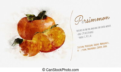 Useful properties of Persimmon - An animated pattern of...