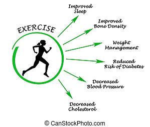 usefulness, trainieren