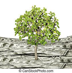 usine argent, concept, croissance