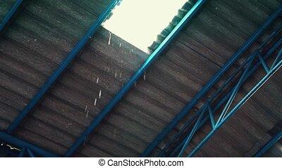 usine, pluie, endommagé, eau, fuir, goutte, toit
