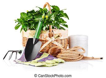 usines, équipement, fleurs, vert, jardin