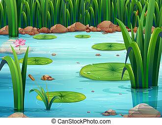 usines, étang, vert