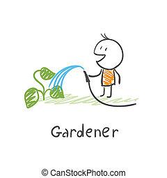 usines, arrosage, jardinier
