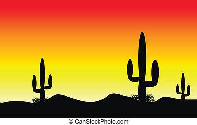 usines, cactus, coucher soleil, désert
