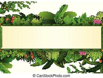 usines, cadre, espace, feuilles, text., exotique, arrière-plan., feuillage, horizontal, bannière, bambou, rectangle