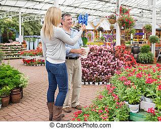 usines, couple, recherche, jardinerie