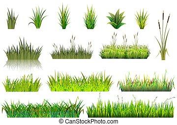usines, ensemble, jardinage, herbeux, isolé, illustration, ou, champ, vecteur, vert, prairie, fond, floral, grassplot, herbe, blanc, jardin