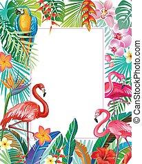 usines, exotique, frontière, flamingoes