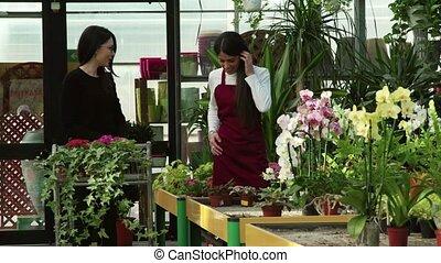usines, femme, aide, quoique, demander, fleurs, achat