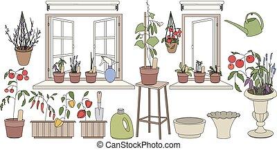 usines, fleur, vegetables., pots, herbes, fenêtre, croissant...