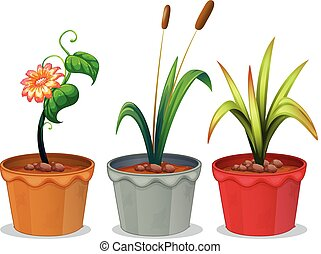 usines, potted