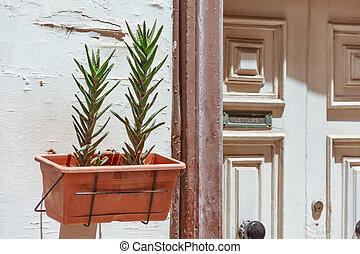 usines, succulents, entrée, box., porte, rainure, maison, pot, lettres, courrier, réception