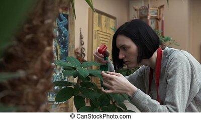 usines, tablier, jardin, arrosage, jeune, pulvérisateur, maison portrait, girl, rouges