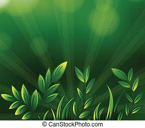 usines, vert feuillu