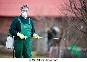 Using chemicals in the garden/orchard: gardener applying an ...