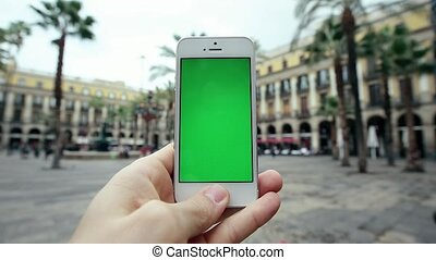 Using Mobile Cell Phone App Against Palm Trees - Man Using...