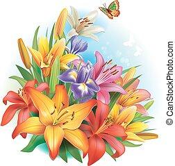 uspořádání, o, květiny