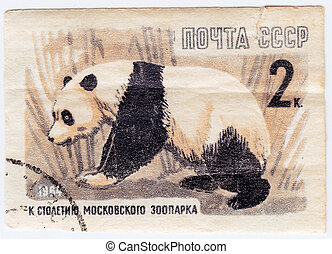 USSR - CIRCA 1964 : Stamp printed in USSR shows panda Bear ...