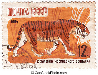 USSR - CIRCA 1964 : Stamp printed in USSR shows Tiger from...