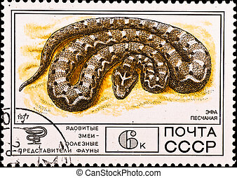 postage stamp shows venomous snake