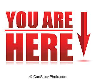 usted, aquí