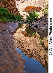 utah, hiking, caçador, -, moab, água, rastro, desfiladeiro,...