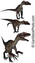 Utahraptor lived in the USA - isolated on white