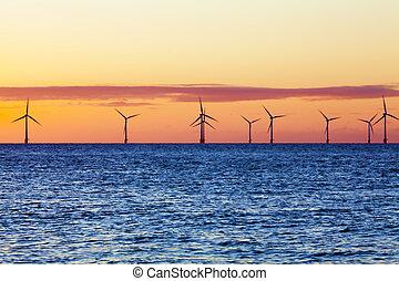 utanför kusten, vind lantgård, hos, soluppgång