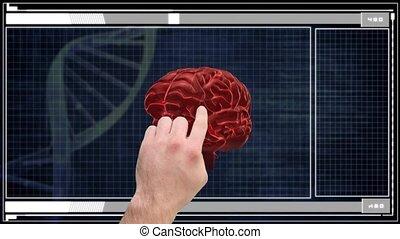 utilisation, futuriste, interface, main