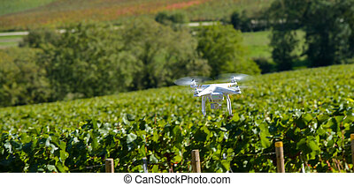 Utility drone over wineyard - Flying utility drone over ...