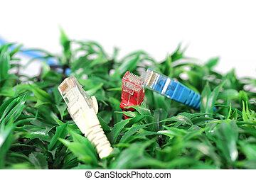 utp, lan, câble, sur, herbe verte
