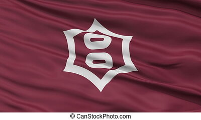 Utsunomiya Capital City Flag