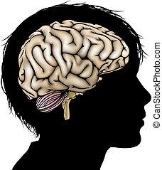 utveckling, hjärna, begrepp