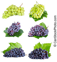 uva, con, hoja