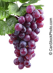 uva, isolado, vinho tinto