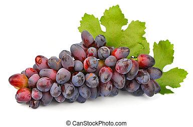 uva, mette foglie