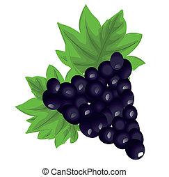 Cartone animato frutta uva illustrazione rosso rosa vite