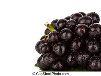 uva rossa, con, foglia verde, isolato, bianco, fondo