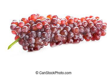 uva rossa, isolato, bianco