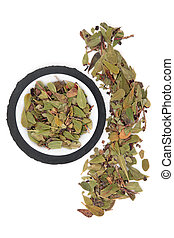 Uva Ursi Herb - Uva ursi herb leaf sprigs in a porcelain...