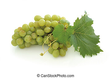 uva verde, grupo
