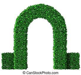 uva verde, hera, arco