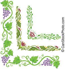 uvas, canto, borda