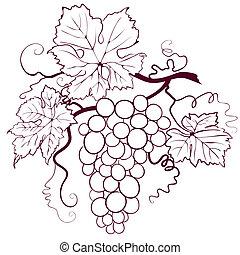 uvas, con, hojas