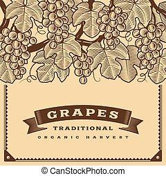 uvas, marrom, colheita, retro, cartão