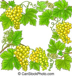 uvas, vector, marco